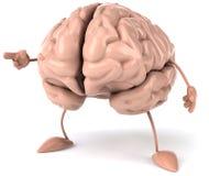 Hersenen Royalty-vrije Stock Foto's