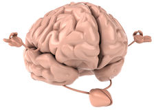 Hersenen Royalty-vrije Stock Foto