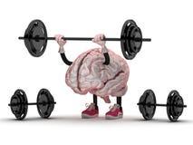 Hersenen Stock Foto