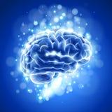 Hersenen & blauwe bokeh Stock Foto's
