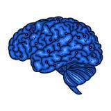 hersenen Cyberhersenen Vector illustratie die op witte achtergrond wordt geïsoleerdd vector illustratie