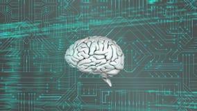 Hersenen en programmacodes met digitale kring royalty-vrije illustratie
