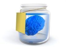 Hersenen in kruik Stock Afbeelding