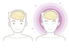 Hersenen - lichaamsdelen stock illustratie