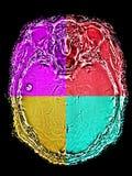 Hersenen M. beeld in verschillende kleuren Royalty-vrije Stock Foto's
