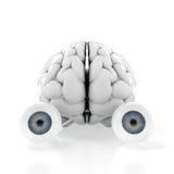 Hersenen met ogen Stock Afbeeldingen