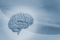 Hersenen op abstracte achtergrond Royalty-vrije Stock Foto