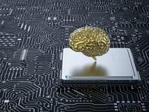 Hersenen op cpu Stock Afbeelding
