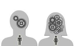 Hersenen van de mens en vrouw Royalty-vrije Stock Afbeelding