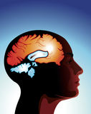 Hersenen vibes Stock Foto's