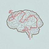 Hersenenlabyrint met correcte weg Stock Afbeeldingen