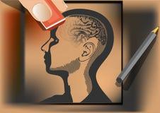 Hersenenwas. de kunstenaar veegt menselijke hersenen met gom af Royalty-vrije Stock Afbeeldingen