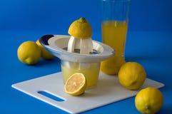 Herstellung der Limonade Stockfotografie