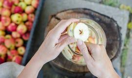 Herstellung des Apfelessigs - Szene von oben genanntem - übergeben Sie Schalenäpfel lizenzfreie stockfotografie