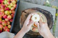 Herstellung des Apfelessigs - Szene von oben genanntem - übergeben Sie Schalenäpfel stockfotografie