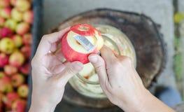 Herstellung des Apfelessigs - Szene von oben genanntem - übergeben Sie Schalenäpfel lizenzfreie stockbilder