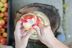 Herstellung des Apfelessigs - Szene von oben genanntem - übergeben Sie Schalenäpfel lizenzfreie stockfotos