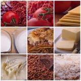 Lasagne-Rezept-Bestandteile Lizenzfreie Stockbilder