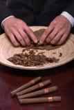 Herstellung von Zigarren von getrocknet herauf Blätter Stockbild