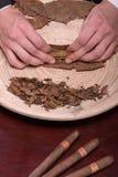 Herstellung von Zigarren von getrocknet herauf Blätter Lizenzfreie Stockbilder