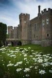 Herstmonceux slott som ses över dess jordning med tusenskönor som växer i förgrund royaltyfria bilder