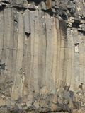 Hert enkel, in het hert van basalt Royalty-vrije Stock Foto's