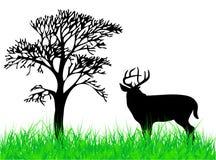 Herten vector illustratie