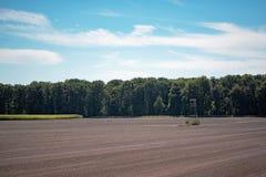 Herten blind in naakte landbouwgrond royalty-vrije stock fotografie