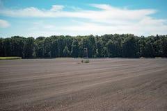 Herten blind in naakte landbouwgrond royalty-vrije stock foto's