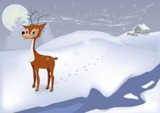 Herten in de koude winter Royalty-vrije Stock Afbeeldingen