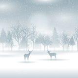 Herten in een de winterlandschap Stock Afbeeldingen