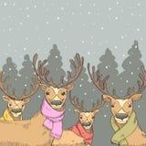 Herten op de achtergrond van het de winterbos Royalty-vrije Stock Fotografie