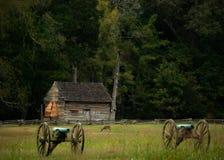 Herten in Shiloh Stock Afbeeldingen