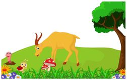 Hertenbeeldverhaal voor u ontwerp Stock Foto