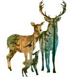 Hertenfamilie vector illustratie