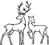 Hertenpaar Royalty-vrije Stock Afbeeldingen