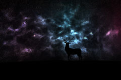 Hertensilhouet in ruimte Stock Fotografie