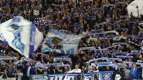 Hertha Berlin ultras perform on tribunes during football game. BERLIN, GERMANY - SEPTEMBER 20, 2017. Hertha BSC Berlin ultras ultra supporters perform on stock video footage