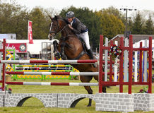 Herts County Show Showjumping Royalty Free Stock Photos