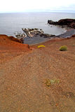Hervideros brown rock in white coast down hill Royalty Free Stock Photography