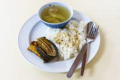 Hervido de la calabaza con arroz cocido al vapor Imagen de archivo