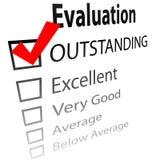 Hervorragende Job evalution Checkkästen lizenzfreie abbildung