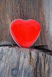 Herz auf eisigem Stamm lizenzfreies stockbild