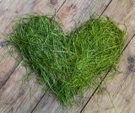 Herz des Grases Stockbilder