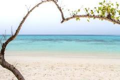 Herz-förmiger Baum auf einem Strand, der das Meer an KOH rok, La übersieht Stockbilder