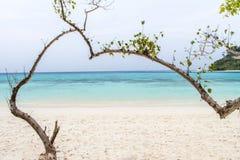 Herz-förmiger Baum auf einem Strand, der das Meer an KOH rok, La übersieht Lizenzfreies Stockbild