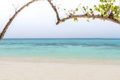 Herz-förmiger Baum auf einem Strand, der das Meer an KOH rok, La übersieht Stockfotografie
