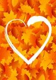 Herz für Herbst Lizenzfreie Stockfotografie
