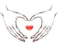 Herz Form Handzeichen Vektor Abbildung Illustration Von Leben