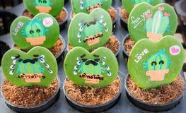 Herz formte Anlage Kerrii Hoya mit gemalten Rosen und Mitteilung stockfotografie